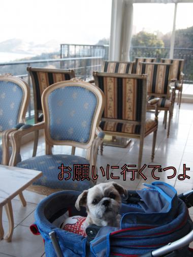 ・搾シ儕1139766_convert_20120212215457