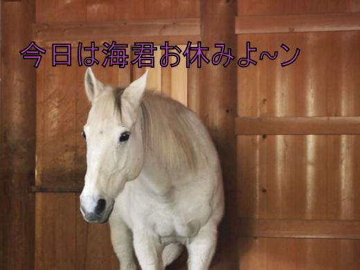 ・搾シ単1139811_convert_20120218212605