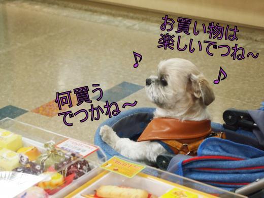 ・搾シ儕1139889_convert_20120221155923