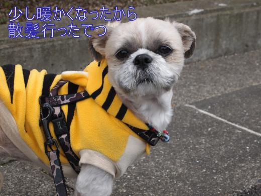 ・撰シ儕3030961_convert_20120304221302