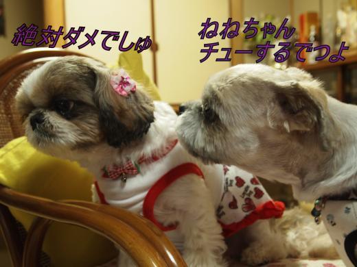 ・搾シ善B097682_convert_20120315000800