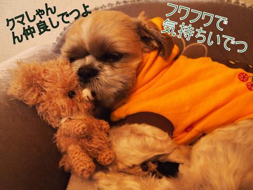・搾シ捻3181096_convert_20120318143937