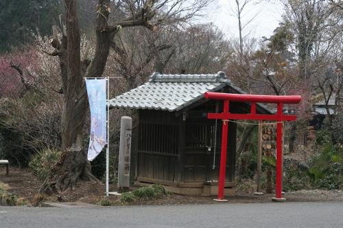 midori2_066.jpg