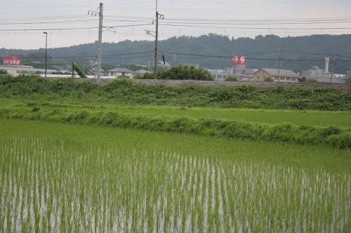 takasaki_049.jpg