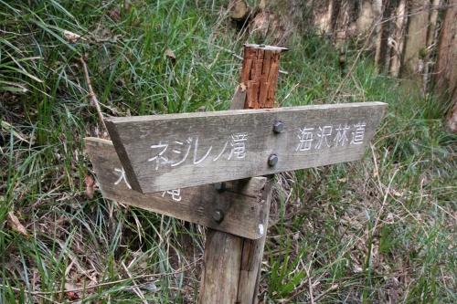 unazawa_230.jpg