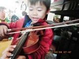 バイオリニスト (1)