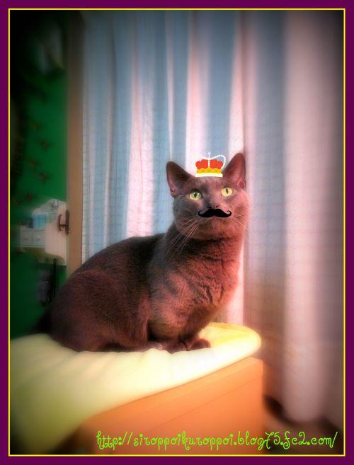 ru-king.jpg
