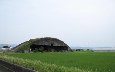kouchi12-1.jpg