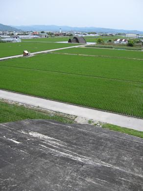 kouchi12-3.jpg
