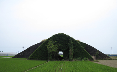 kouchi12-4.jpg