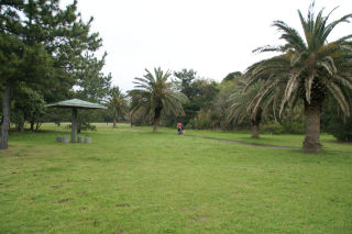 20080413-14.jpg