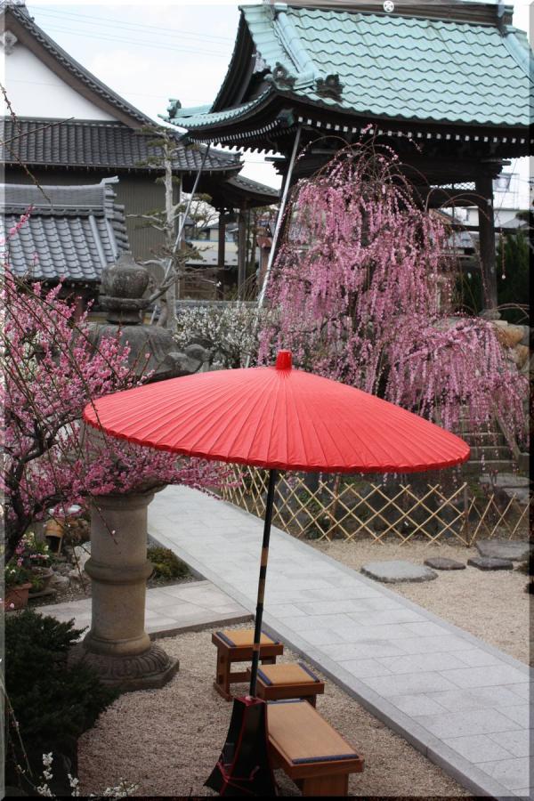 ~ 和傘遊び2