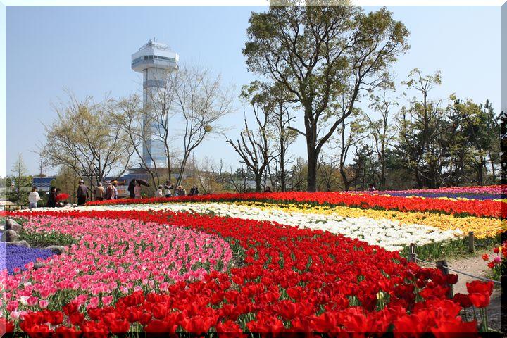 ~ 木曽三川公園5