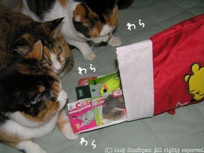 プレゼントいっぱい