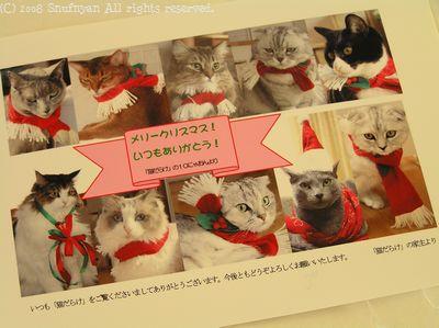 にゃんず勢ぞろいのクリスマスカード