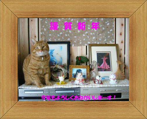 ねこ 猫 新年のご挨拶祭り04