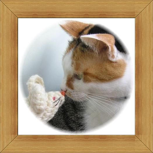 ねこ 猫 新年のご挨拶祭り08