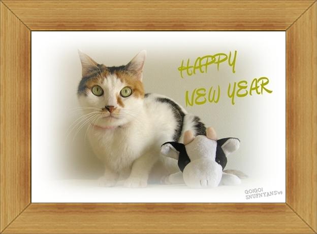 ねこ 猫 新年のご挨拶祭り11