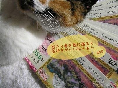 当たり券を枕に・・・。