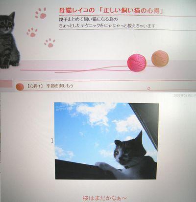 レイコさんのブログ