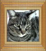 ねこ 猫 めがね祭り 05番 メガネ祭り05女将さま家端午さん