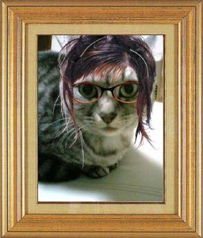 ねこ 猫 めがね祭り 14番 メガネ祭り14 ひなにゃんこ家ひなさん