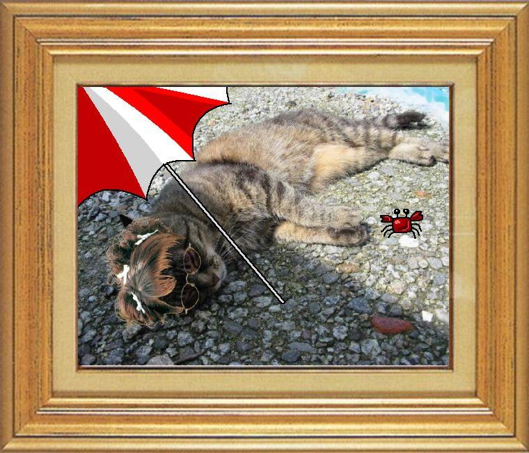 ねこ 猫 めがね祭り 15番 メガネ祭り15 由乃さま家猫ドンさん「海のリゾート」
