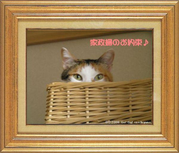 ねこ 猫 家政婦 01番 すなふ家 「まぁ~くんの家政婦のお約束」