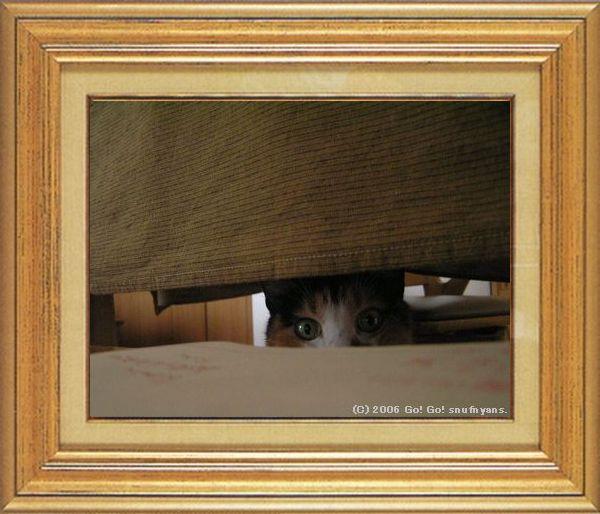 ねこ 猫 家政婦 03番 すなふ家 「レイコさんの家政婦のお約束」