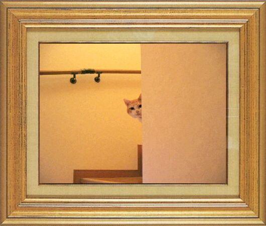 ねこ 猫 家政婦 05番 ☆manahiro☆さま家 「ちびちゃんの家政婦は見た!」