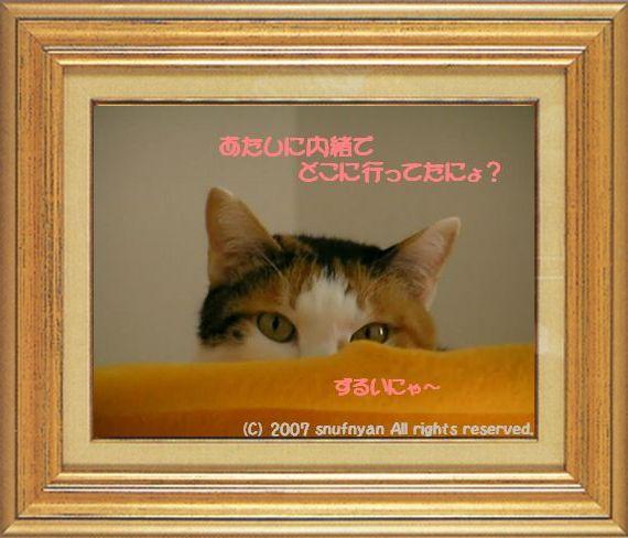 ねこ 猫 家政婦 10番 すなふ家 「マー君のあたしに内緒でどこにいってたにょ?」