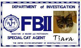 CAT連邦捜査官 NO.016 「Tiara」