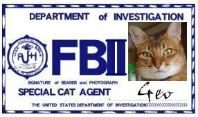 CAT連邦捜査官 NO.019 「Geo」