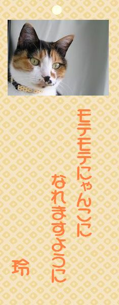 七夕祭り 02 レイコさんの願い事