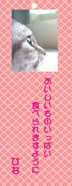 七夕祭り 07 ひなさん短冊