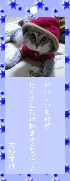 七夕祭り 2008 13 ちびすけさんのお願い事