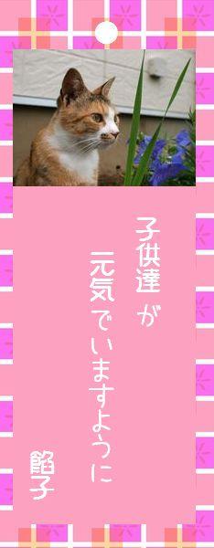 七夕祭り 2008 18 餡子さんのお願い事