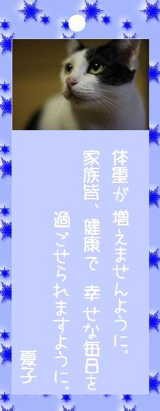 七夕祭り 2008 20 夏子さんのお願い事