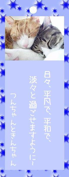 七夕祭り 2008 24 つんちゃんときんちゃんのお願い事