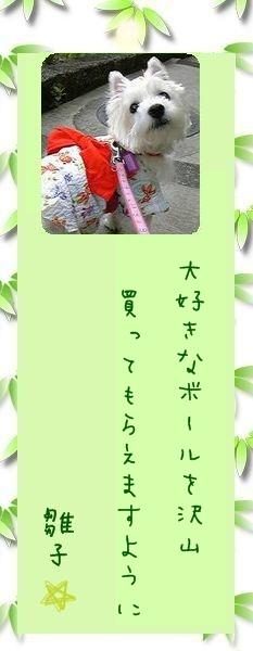 七夕祭り 2009 04 雛子さんのお願い事