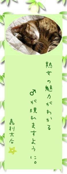 七夕祭り 2009 21 嘉利太后さんのお願い事