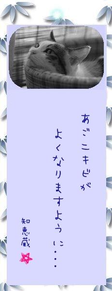 七夕祭り 2009 22 知恵蔵さんのお願い事