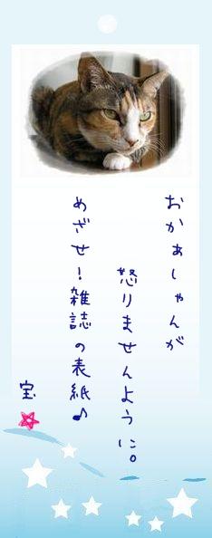 七夕祭り 2009 25 タカ君のお願い事