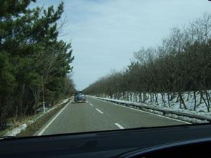 防風林と残雪が、冬の日本海の厳しい寒さを連想させる