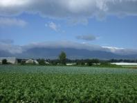 2008 夏 八ヶ岳