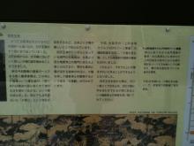 IMG_1963_石鳥居解説_small
