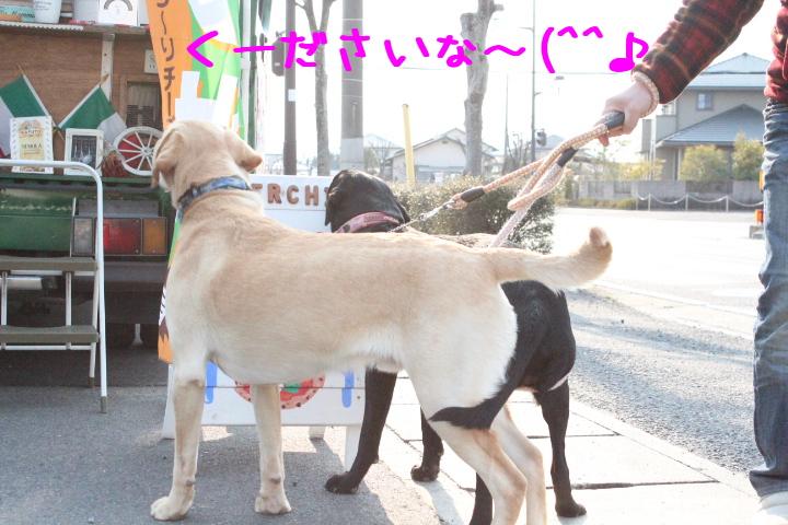 fVMrY_ju2MBJR1c.jpg