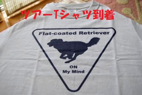 004_convert_20090630134405.jpg