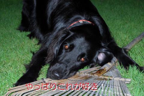 004_convert_20090730223451.jpg