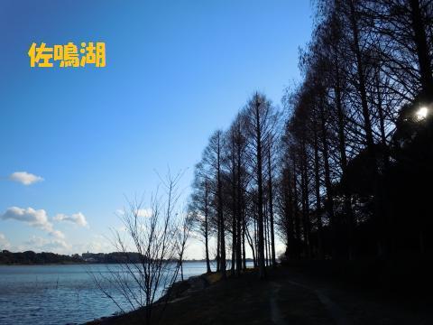 004_convert_20110131172436.jpg